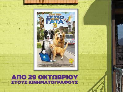 «Σαν τον Σκύλο με τη Γάτα 3»   Από 29 Οκτωβρίου στους κινηματογράφους!